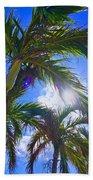 Palm Gazing Beach Towel