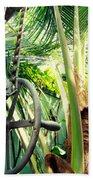 Palm House Pulley Beach Towel