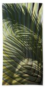 Palm On Palm Beach Towel