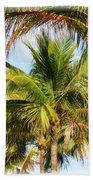 Palm Portrait Beach Towel