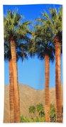 Palm Springs Beach Towel