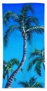 Palm Tops Beach Towel