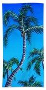 Palm Tops Beach Towel