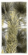 Palm Tree Pen And Ink Grayscale With Sepia Tones Beach Towel