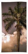 Palm Trees Against Beautiful Sky Beach Towel