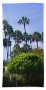 Palm Trees. My Beautiful California Beach Towel