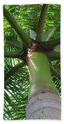 Palm Unbrella Beach Sheet