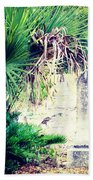 Palmetto And Head Stone Beach Towel
