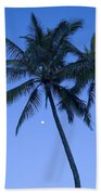 Palms And Blue Sky Beach Towel