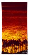 Palms And Reflections Beach Towel