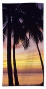 Palms And Sunset Sky Beach Towel