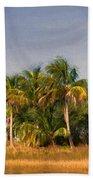 Palms - Naples Florida Beach Towel
