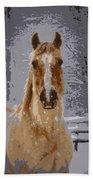 Palomino In The Snow Beach Towel