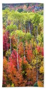 Panoply Of Autumn Color Beach Towel