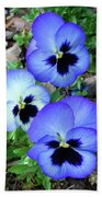 Pansies 0823 Beach Towel