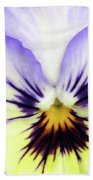 Pansy 01 - Thoughts Of You Beach Towel