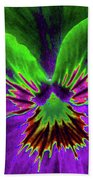 Pansy 02 - Photopower - Thoughts Of You Beach Towel