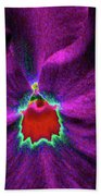 Pansy 03 - Photopower - Thoughts Of You Beach Towel