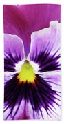 Pansy 07 - Thoughts Of You Beach Towel