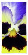 Pansy 09 - Thoughts Of You Beach Towel