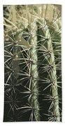 Paper Cactus Beach Towel