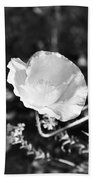Paper Flower In B And W Beach Towel