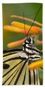 Paper Kite Butterfly With Orange Flower Beach Towel