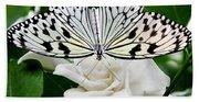 Paperkite On Gardenia Beach Towel