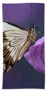Papilio Dardanus On Violet Flowers Beach Sheet