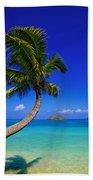 Paradise Palm Over Lanikai Beach Towel