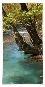 Paradise River Beach Towel