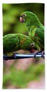 Parakeet Couple Beach Towel