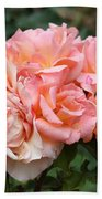 Paris Garden Roses Beach Towel