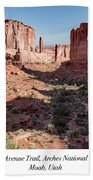 Park Avenue Trail, Arches National Park, Moab, Utah Beach Towel