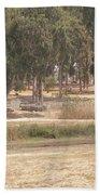 Park Near The Source Of The Yarkon River Beach Towel