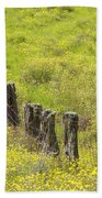 Parker Ranch Fence Beach Towel