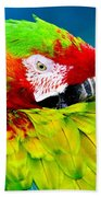 Parrot Time 1 Beach Towel