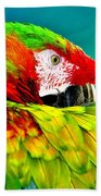 Parrot Time 2 Beach Towel