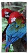 Parrots Beach Towel
