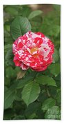 Party Rose #3 Beach Towel