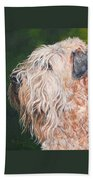 Pascal, Soft Coated Wheaten Terrier Beach Towel