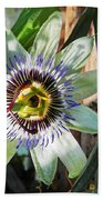 Passion Flower Close-up Beach Towel