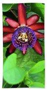 Passion Flower Ver. 15 Beach Towel