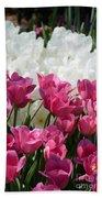 Passionate Tulips Beach Towel