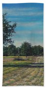 Pastoral Off Poplar Hill Road Beach Towel
