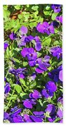 Patch Of Pansies Beach Towel
