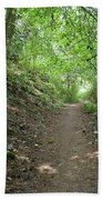 Path By The River Beach Towel