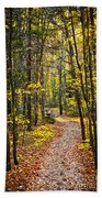 Path In Fall Forest Beach Towel