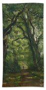 Path In The Forest Beach Towel