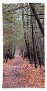 Path In The Woods Beach Towel